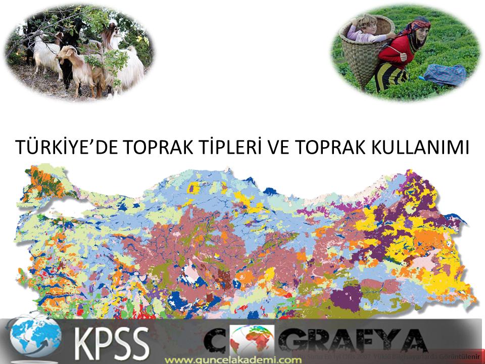 Türkiyede Toprak Tipleri ve Özellikleri